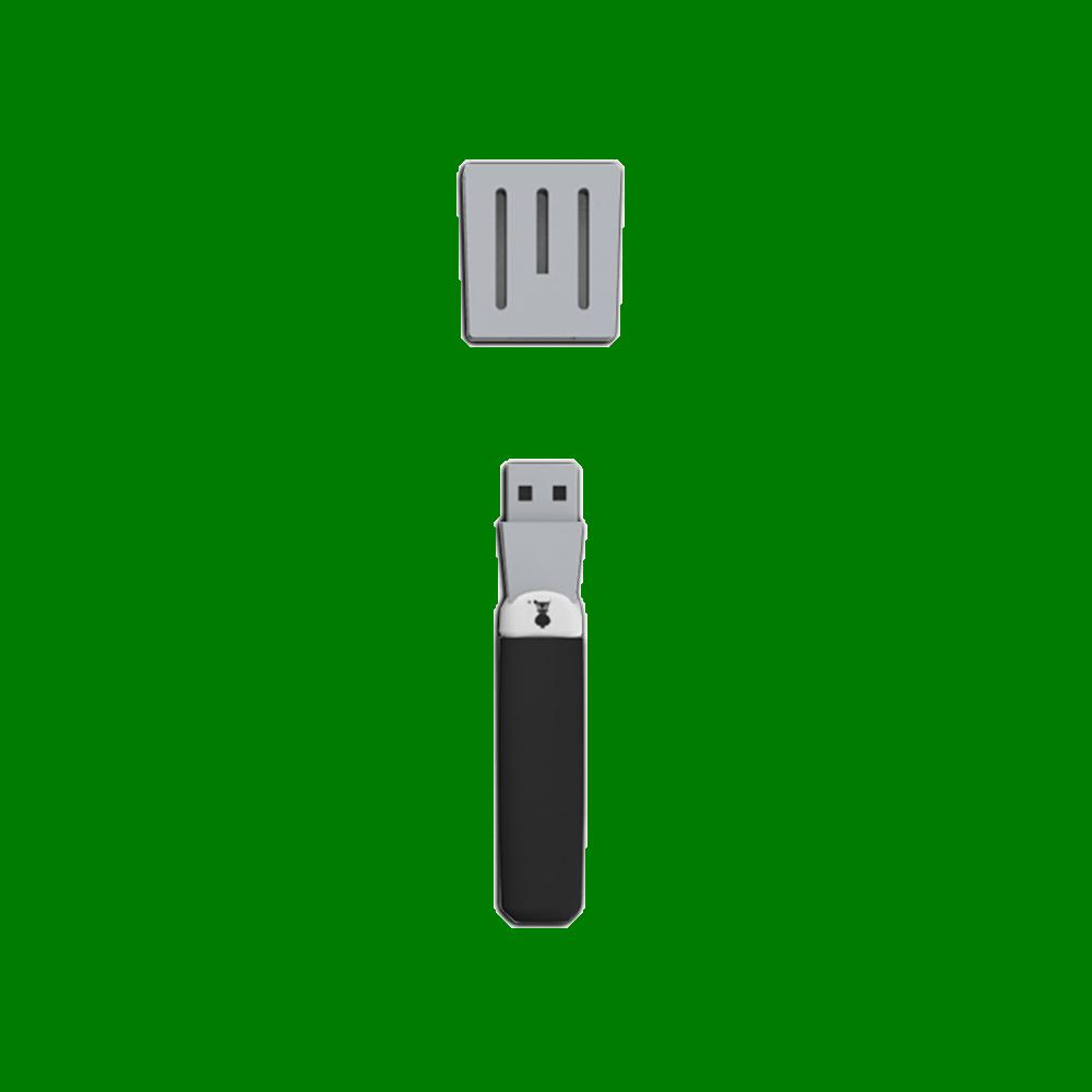 Stekspadeformat USB-minne